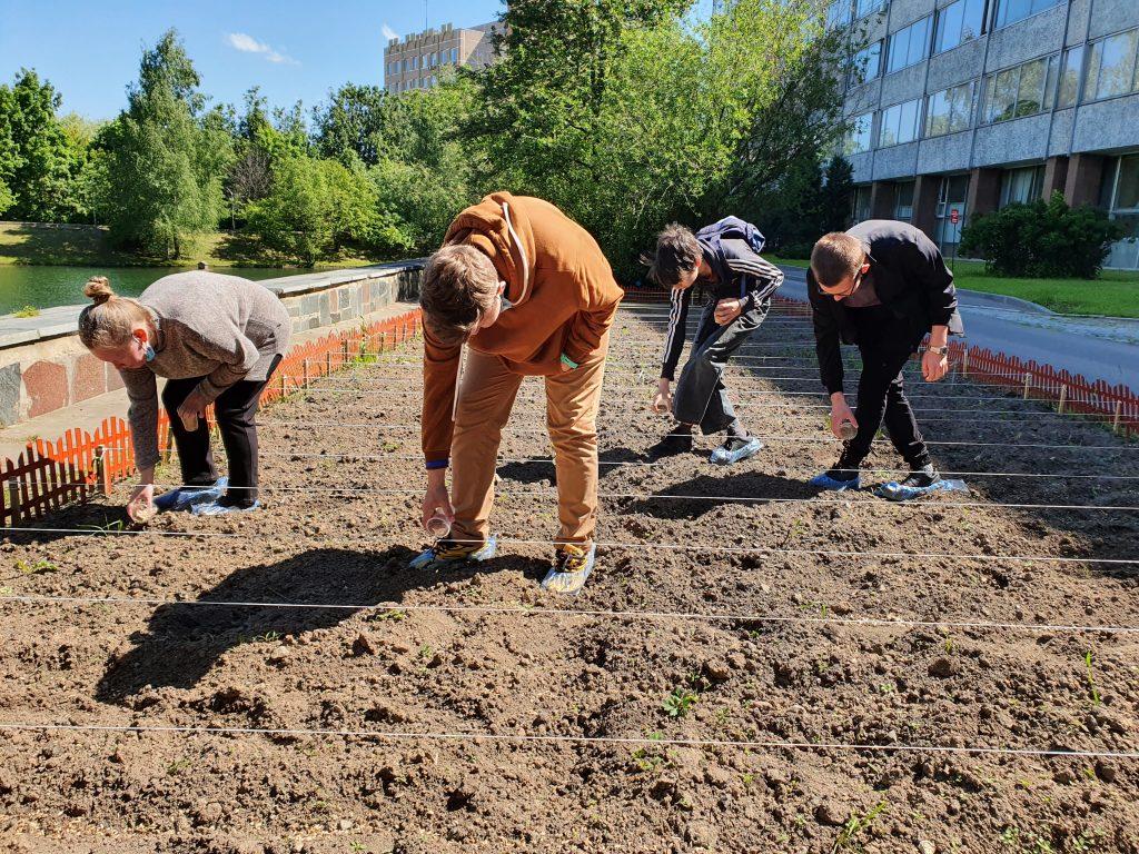 Открытый семинар для школьников по агротехнологиям 4 июня 2021-го года